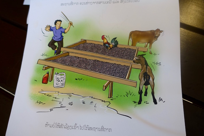 'Don't allow chickens or other livestock near your drying coffee beans' - one of Lat's illustrations from a Lao coffee research project