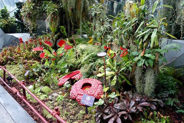 eatdrinklaos-singapore-best-family-fun-garden-dome