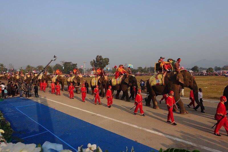 eatdrinklaos-xaignabouri-elephant-festival-elephants