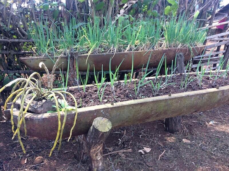 eatdrinklaos-xiang-khouang-plain-jars-bomb-gardens