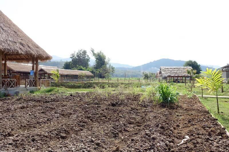 eatdrinklaos-luang-prabang-buffalo-dairy-farm