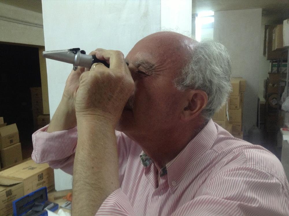 Peppe Mancini, Terre Del Principe