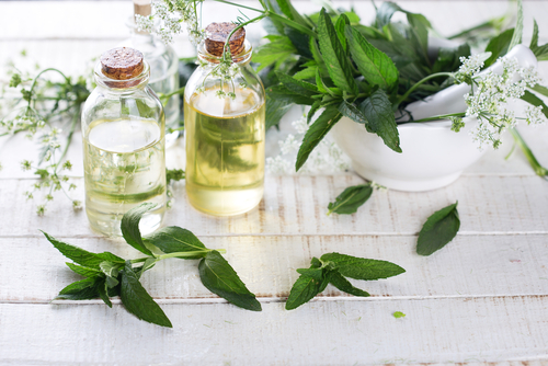 The Three Aromatherapy Oils Everyone Should Use In Recovery