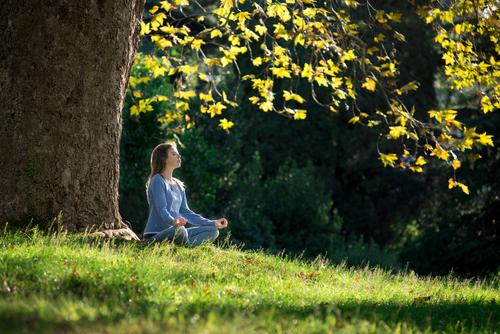 5 Benefits Of Spending Time Around Trees