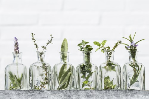 Which Essential Oils Can Aid In The Therapeutic Process?