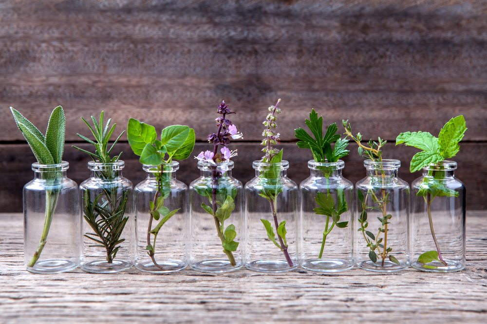 Best Essential Oils For Overcoming Challenges In Recovery