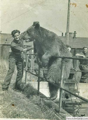 Wojtek,hanging out with his company.