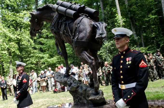 An image from the unveiling of Sgt Reckless's statue at the National Museum of the Marine Corps. Click the image to read more about Sgt Reckless.