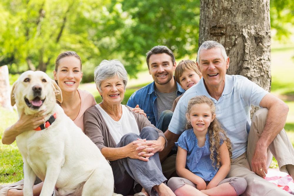 bigstock-Portrait-of-an-extended-family-56115809.jpg