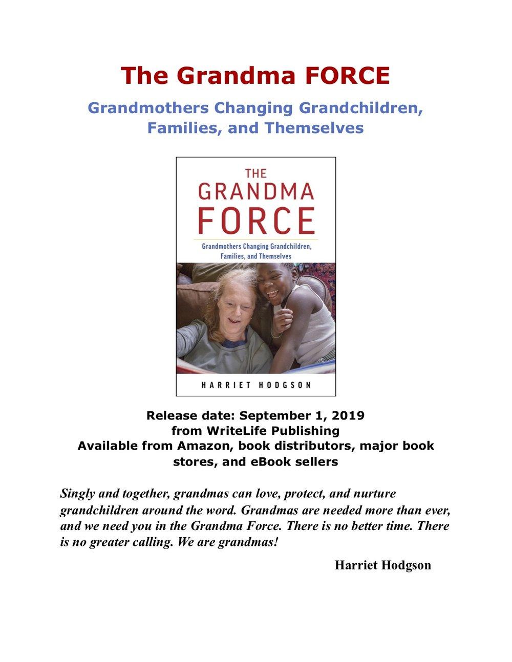 The Grandma Force Mini Poster.jpg