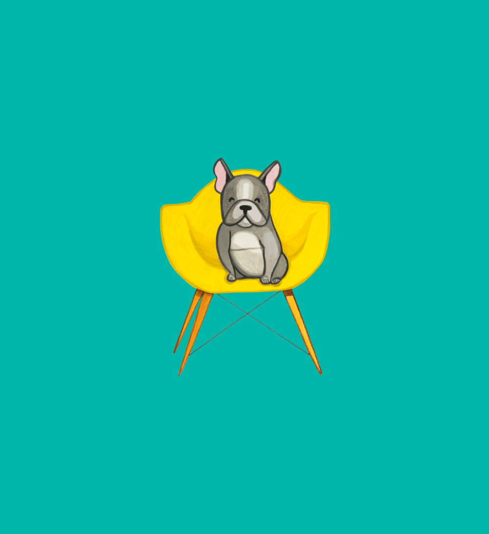 Frenchie on Yellow Chair.png