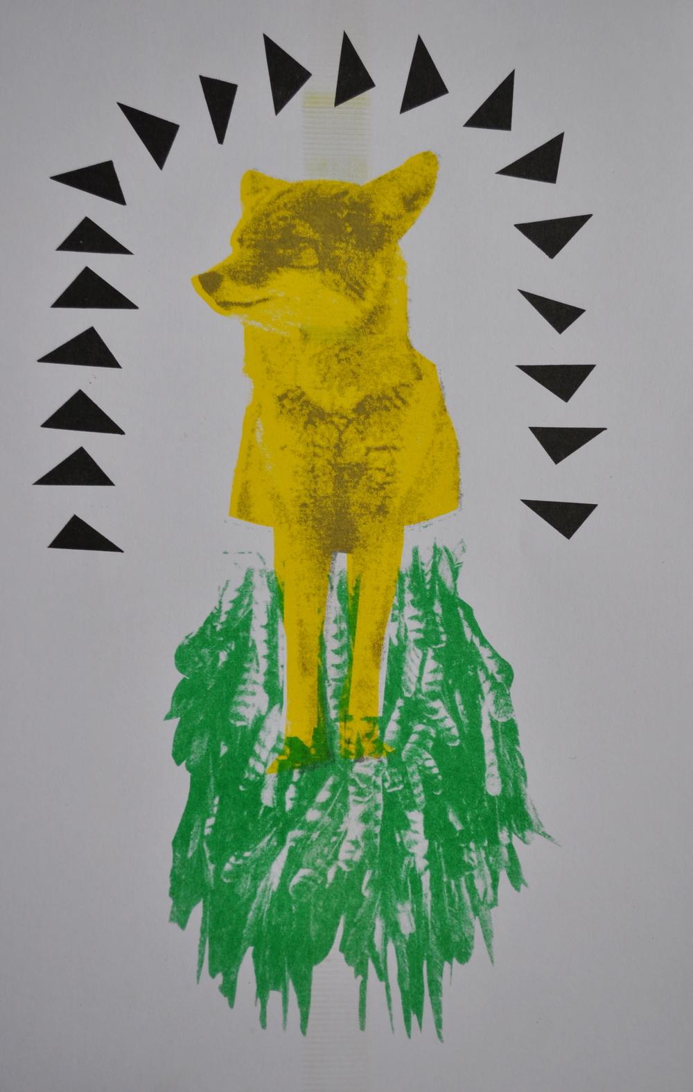 print_coyote.jpg
