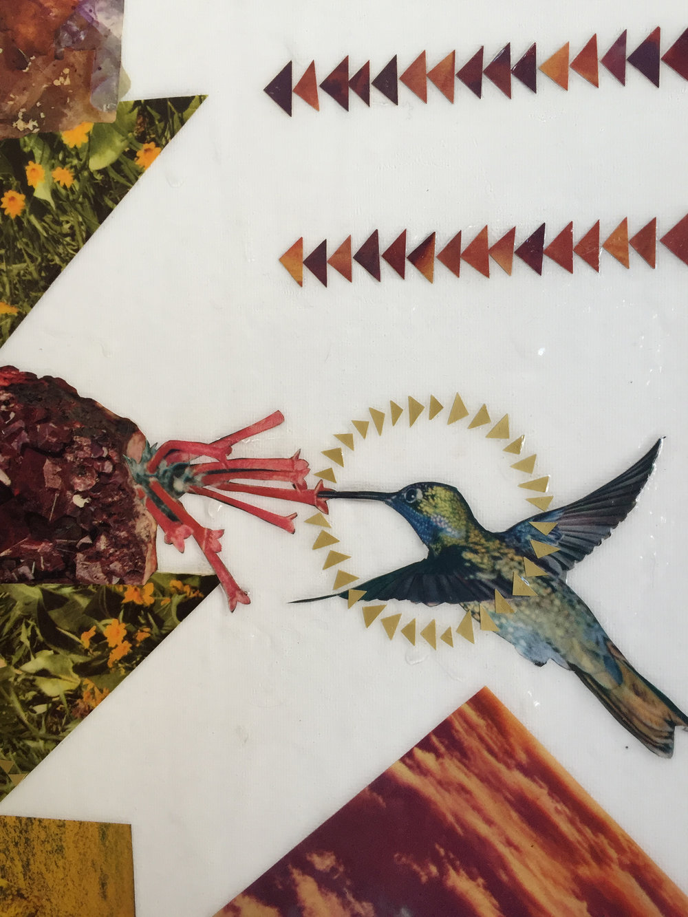 hummingbird_detail.JPG