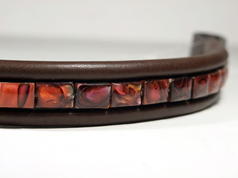 Fuchsia Abalone Close Up