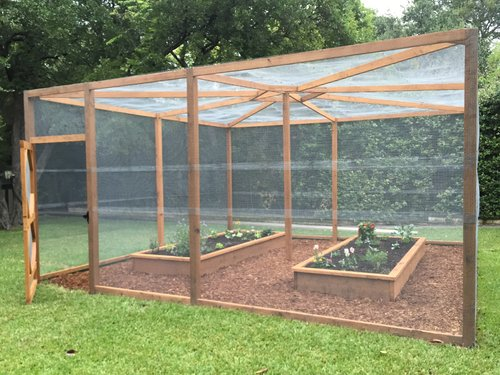 Edible gardens enclosed in a critter proof cage, designed and installed by the eld staff.