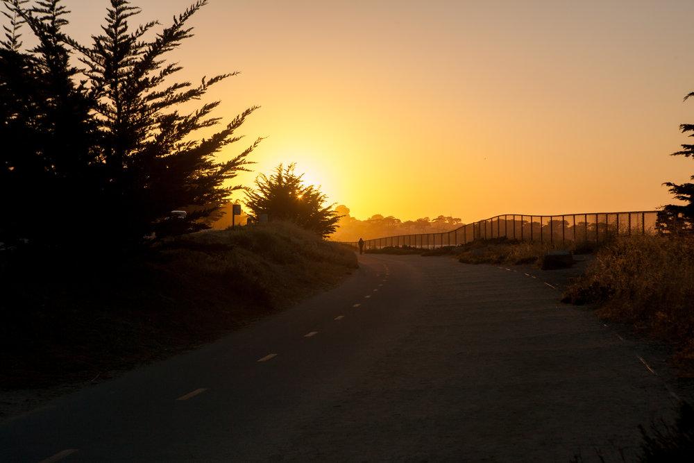 Monterey (1 of 16).jpg