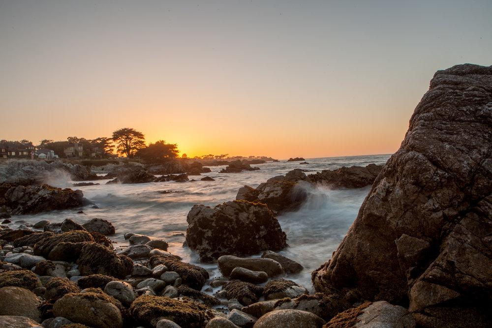 Monterey (3 of 16).jpg