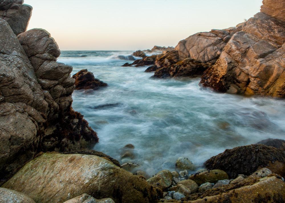 Monterey (4 of 16).jpg
