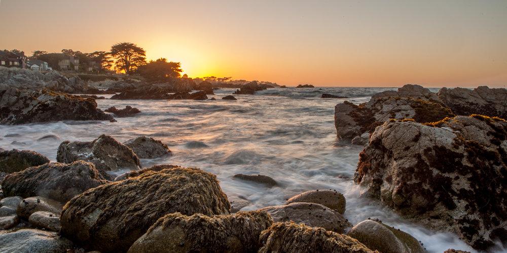 Monterey (5 of 16).jpg