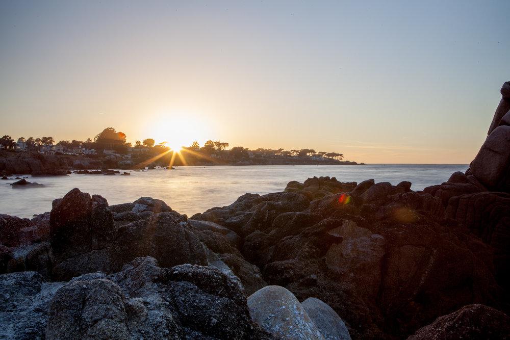 Monterey (7 of 16).jpg