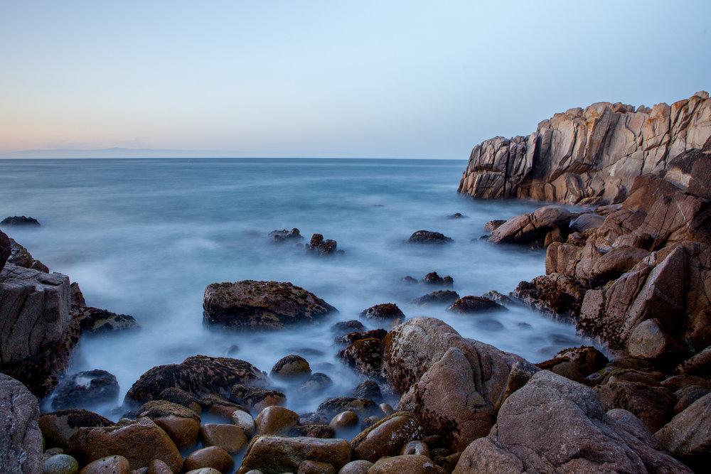 Monterey (11 of 16).jpg