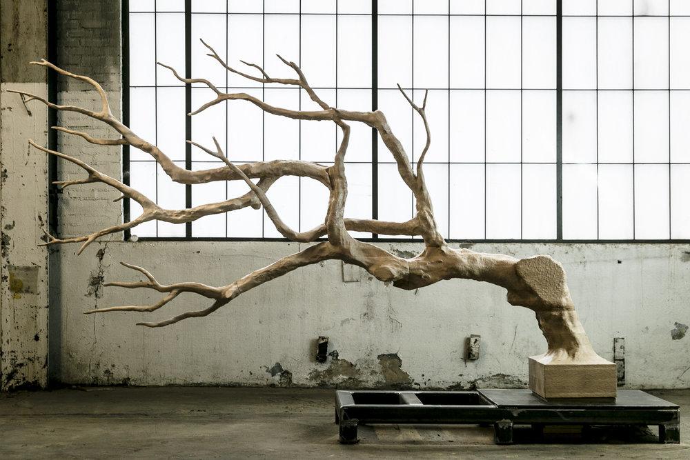 Second Nature by Sebastian Errazuriz