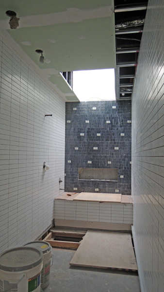 Bathroom tile & skylight