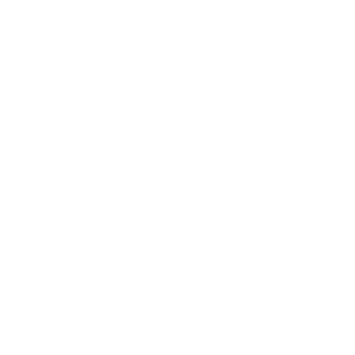Southern Fryed