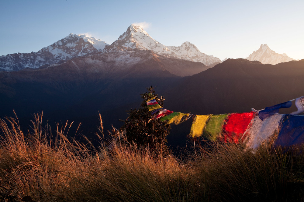 JDB_Nepal_091020_0482.JPG