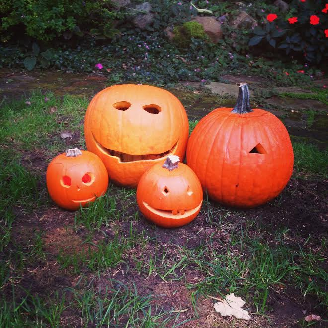 Pumpkin family.