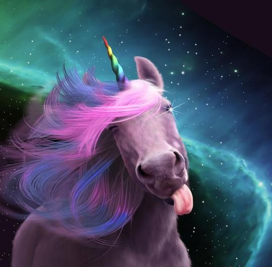 unicorns amber adrian