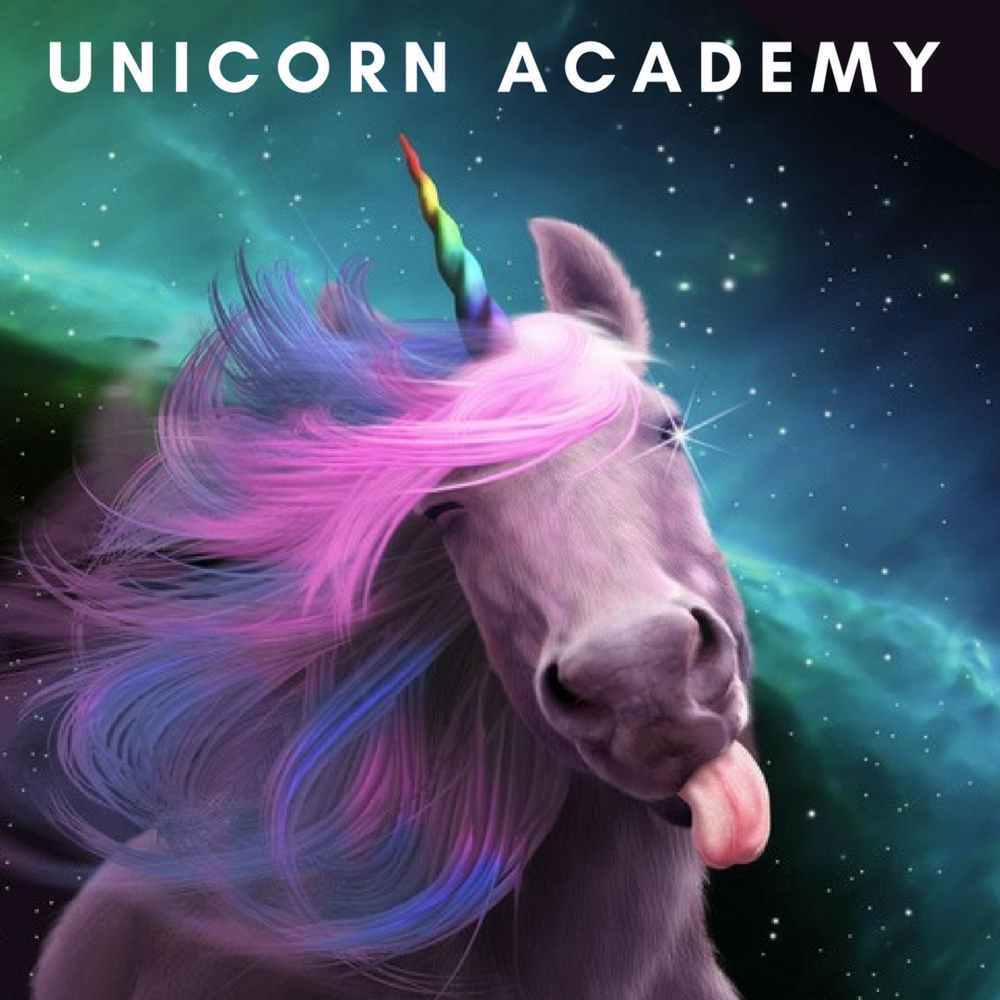 unicorn academy.png