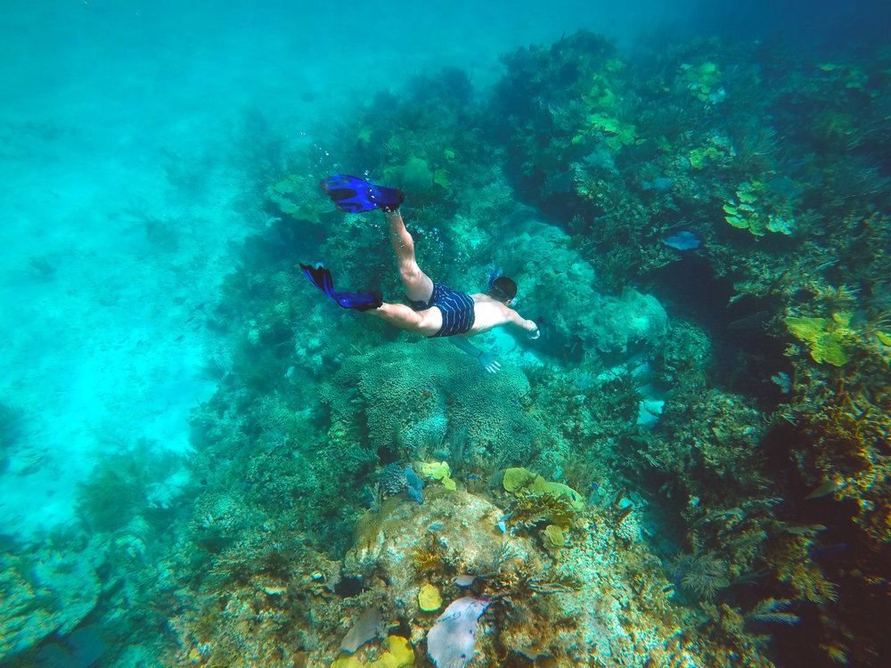 Michael Snorkeling in the Bahamas.jpg