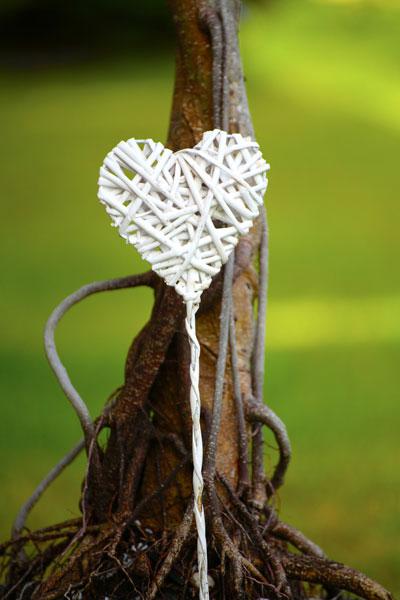 heart-.jpg