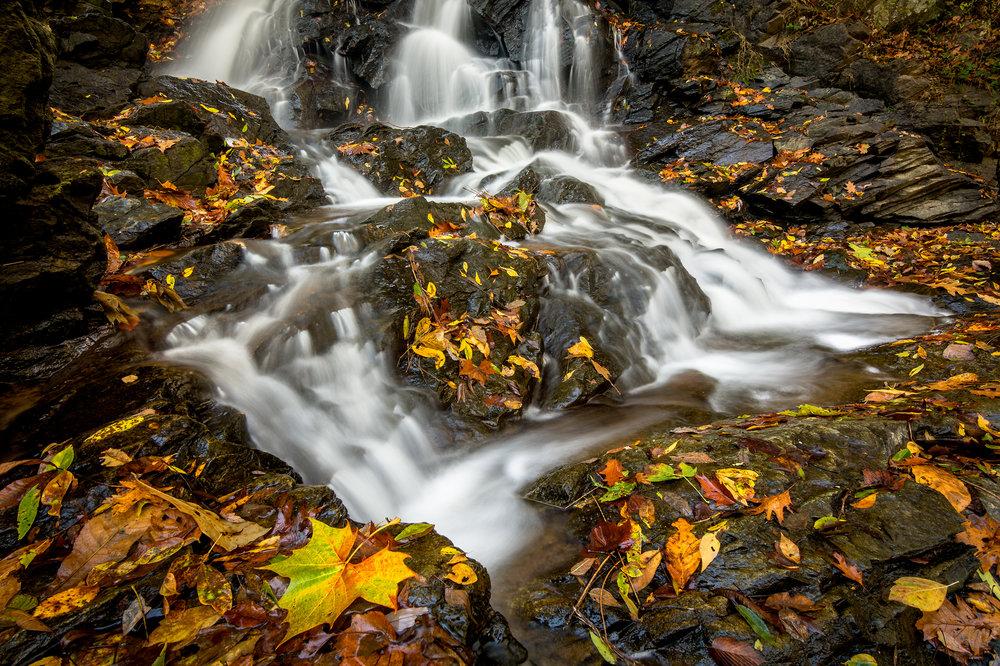 Piney Run Falls