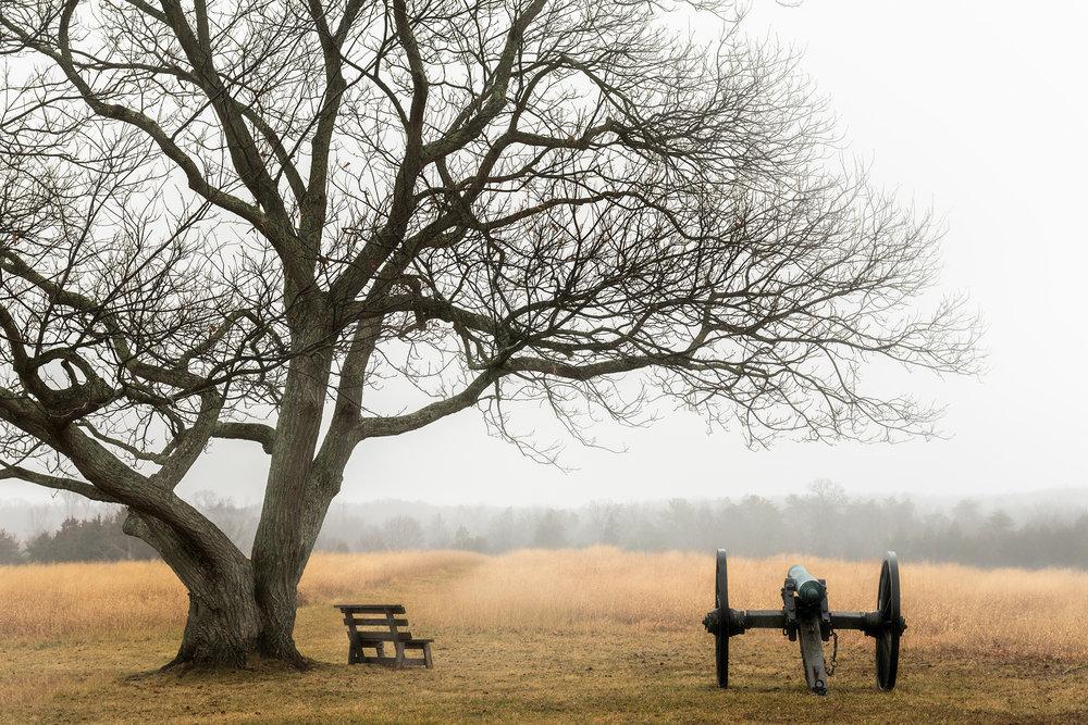 Foggy Battlefield