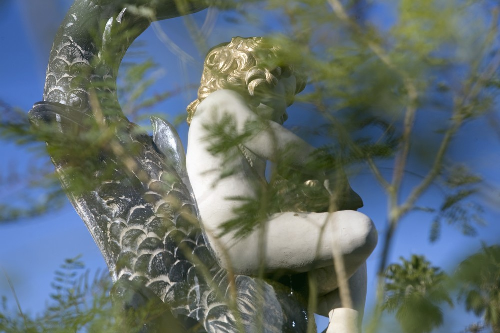 Putto and Fish,   2014