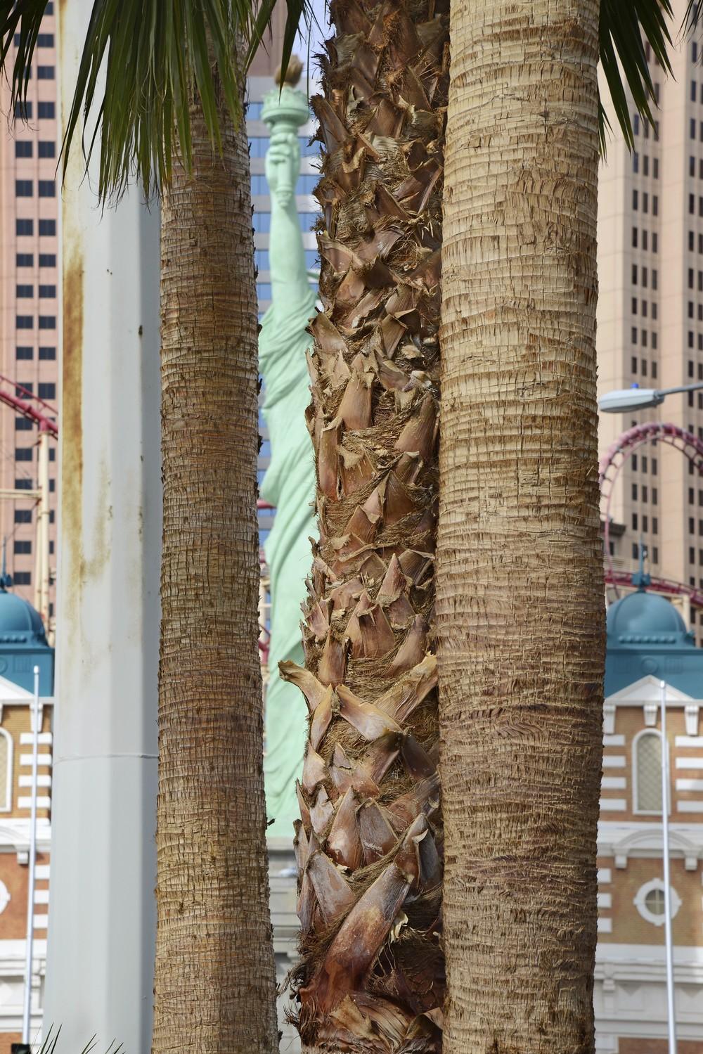 Statue of Liberty, Las Vegas,   2014