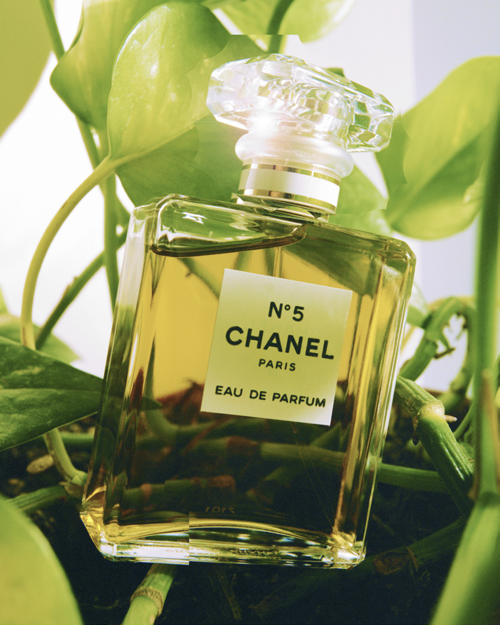 Floral-aldehydic, a bouquet of abstract flowers with an indefinable femininity:  CHANEL N°5 EAU DE PARFUM .