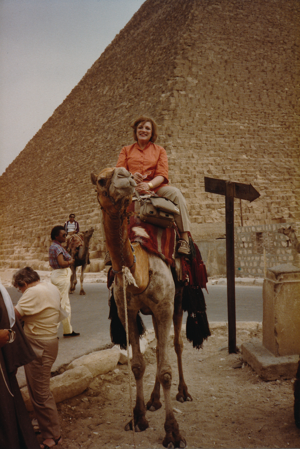 BLS on a camel in Egypt.jpeg