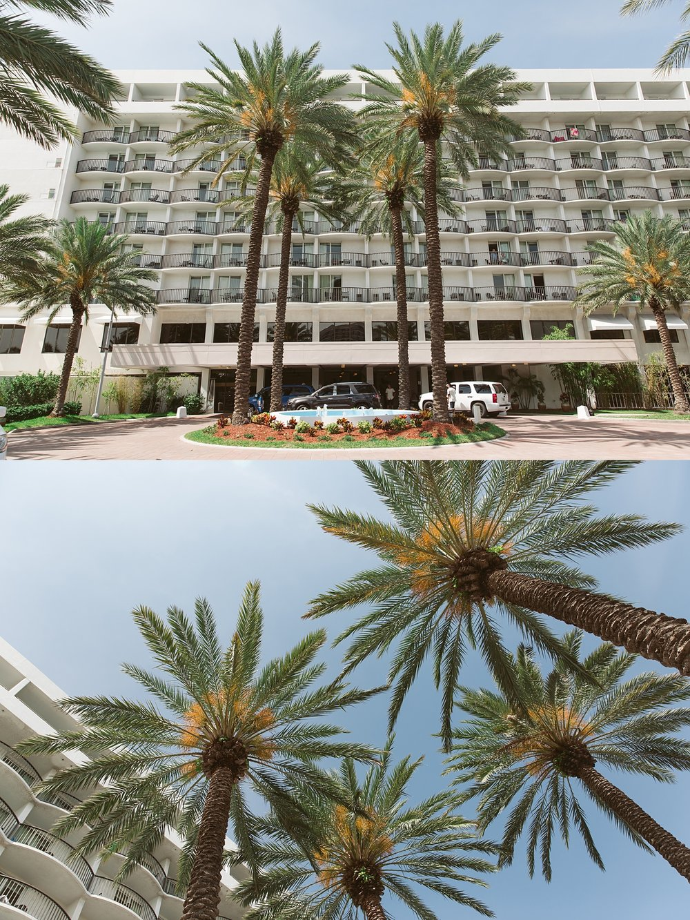 hilton_clearwater_wedding_01.jpg
