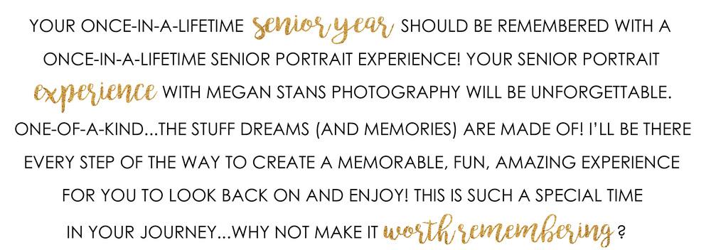 MN Senior Portrait Photographer