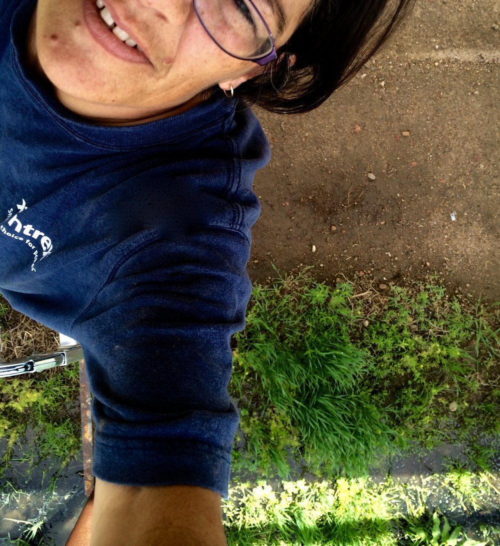 Beth-ladder pic.jpg