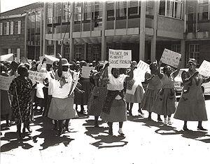 National-Womens-Day-2.jpg