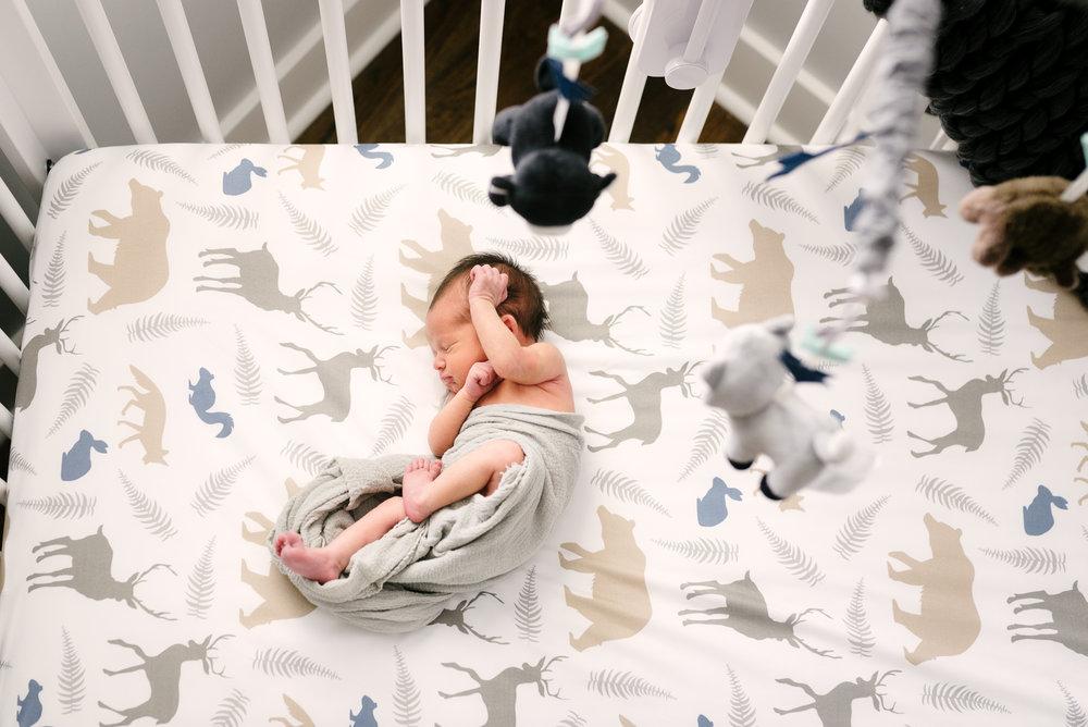 nashville newborn photographer-3.jpg