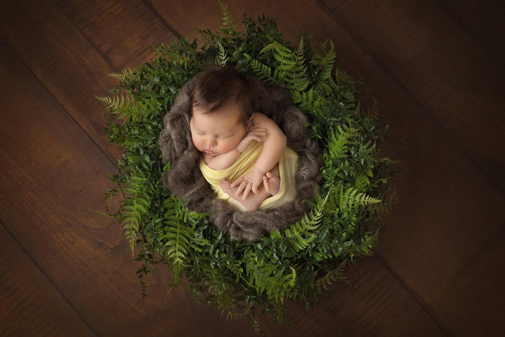 CT Newborn Photographer - Natalie Buck  (1 of 1)-2.jpg