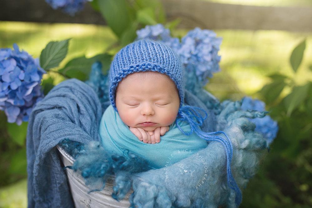 Outdoor CT Newborn Photographer - Natalie Buck Photography (1 of 1).jpg