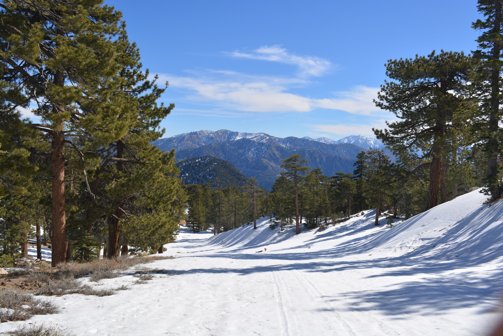 Mt. Waterman Trail, Angeles National Forest, California