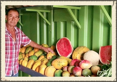 PLANTAGE BRAKKEPUT ARIBA  values the origin of food. This is why your farmer Antonio cultivates fruits & vegetables naturally, without chemical fertilizers & pesticides so he can harvest a safe product for the public.   https://www.facebook.com/Plantage-Brakkeput-Ariba-469059019945030/timeline