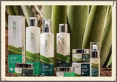 CURALOE  Curacao Ecocity Projects NV (CurAloe) is a dynamic company specializing in the cultivation, production & supply of a premium range of Natural & Organic raw Aloe Vera ingredients, and the manufacturing of the CurAloe cosmetic & health drink brand.   http://www.ecocityprojects.com/